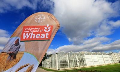 Koncern Monsanto odrzucił ofertę przejęcia przez Bayera za 62 mld dol.