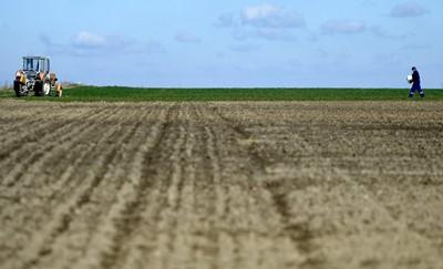 CBŚP: zatrzymano osoby zajmujące się wyłudzaniem dotacji unijnych dla rolników