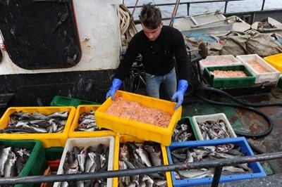 Senackie poprawki do noweli ustawy o rozwoju sektora rybackiego