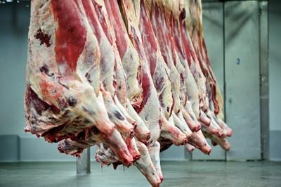 Na razie eksport wołowiny rośnie, ale potem już nie będzie tak dobrze