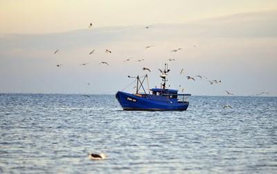 Prezydent podpisał nowelizację ustawy dot. rozwoju sektora rybackiego