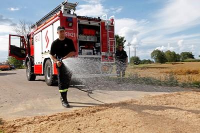 GLW: mogą wystąpić kolejne ogniska ASF, ale sytuacja jest pod kontrolą
