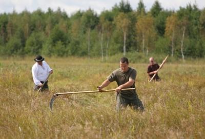 Mistrzostwa w koszeniu podmokłych łąk nad Biebrzą