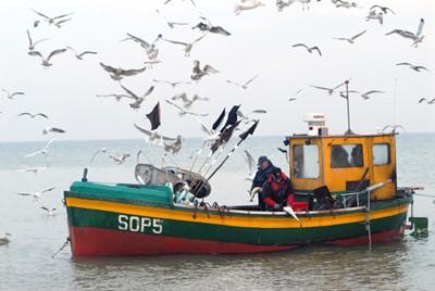 Rybacy zaniepokojeni propozycjami limitów połowowych na dorsza