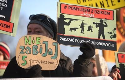 Ekolodzy apelują do prezesa PiS o odrzucenie projektu Prawa łowieckiego