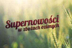 Supernowości w zbożach ozimych