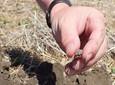 Troska o żyzność gleby