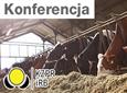 """Konferencja """"Innowacyjne białko"""""""