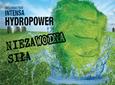Jak dobrać mieszankę traw na gleby okresowo zalewowe
