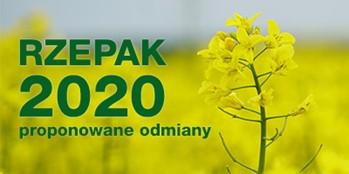 Rzepak 2020 - proponowane odmiany