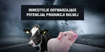 Odtworzenie potencjału produkcji rolnej – do 300 tys. zł wsparcia. Nabór wniosków trwa!