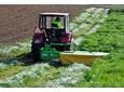 Użytki zielone – polecane mieszanki traw
