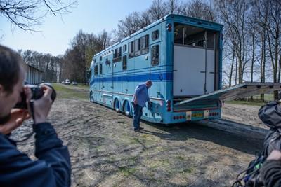 Shirley Watts zabrała swoje konie ze stadniny w Janowie