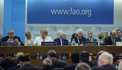 FAO: w marcu żywność podrożała, ale nieznacznie