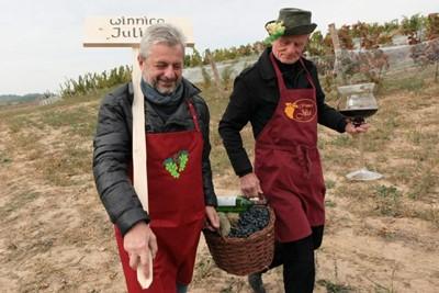 Lubuscy winiarze zapraszają na weekendy otwartych winnic