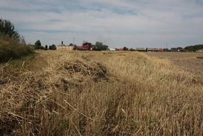 Sprzedaż państwowych gruntów wstrzymana na 5 lat - prezydent podpisał ustawę