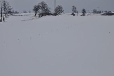 Pola pod śniegiem