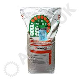 Kukurydza Bogoria (50tys.) 250 FAO